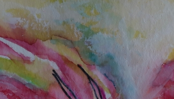 Abstract Detail 1 Sun Spot Flower ©Felipe Adan Lerma https://felipeadan-lerma.pixels.com/featured/abstract-detail-1-sun-spot-flower-felipe-adan-lerma.html