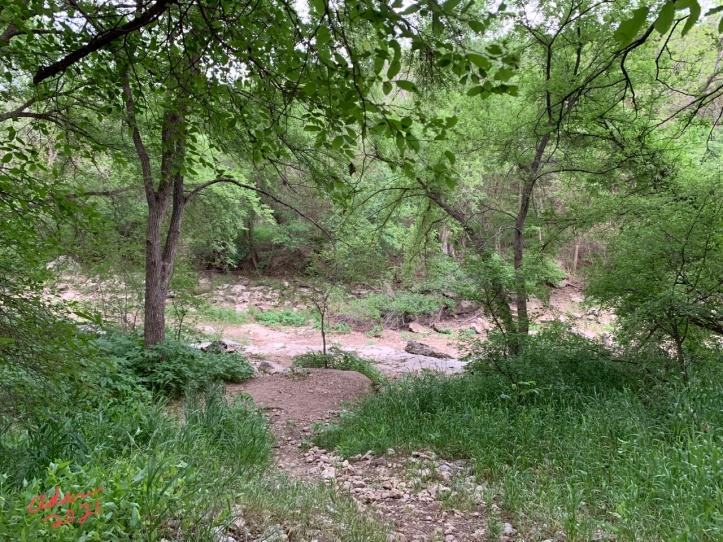 Spyglass Barton Creek Greenbelt entrance 04.26.21 ©Felipe Adan Lerma