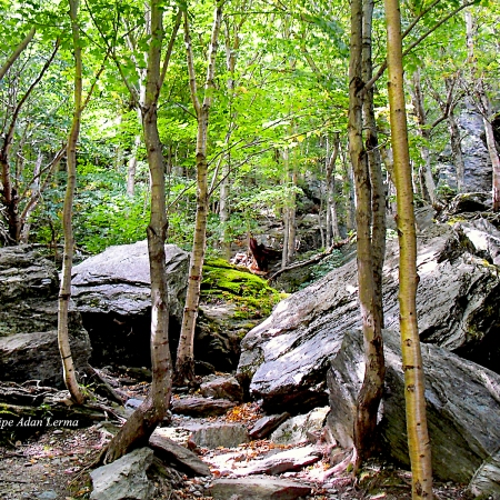 Rocks at Smugglers Notch ©Felipe Adan Lerma https://felipeadan-lerma.pixels.com/featured/image-included-in-queen-the-novel-rocks-at-smugglers-notch-enhanced-felipe-adan-lerma.html