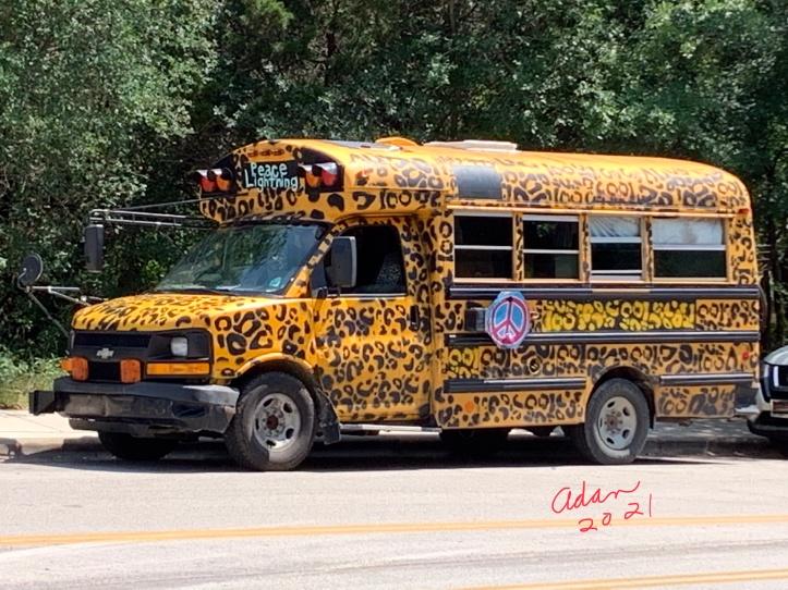 Random (sorta) Pic of the Day 05.03.21 ©Felipe Adan Lerma 60's Style Mini-School Bus