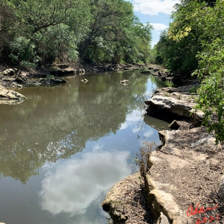 Random (sorta) Pic of the Day 05.12.21 ©Felipe Adan Lerma A Little Water in Barton Creek