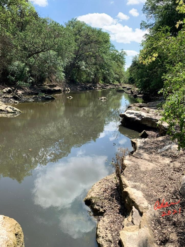 Random (sorta) Pic of the Day 05.12.21 ©Felipe Adan Lerma A Little Water in Barton Creek