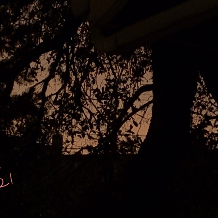 Sunset Silhouette After the Rain ©Felipe Adan Lerma 05.18.21 Austin Texas