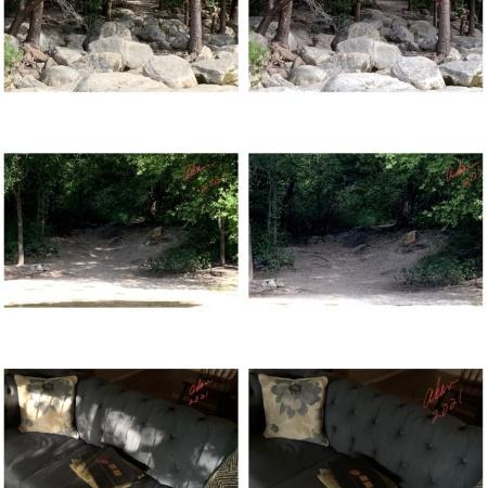 Dappled light vs unlit interior & exterior scenes 06.26.21