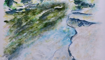 Barton Springs Greenbelt Austin Texas Poster https://felipeadan-lerma.pixels.com/featured/barton-springs-greenbelt-austin-texas-poster-felipe-adan-lerma.html