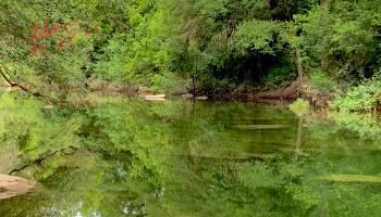 Barton Creek Reflections Father's Day 06.20.21 ©Felipe Adan Lerma