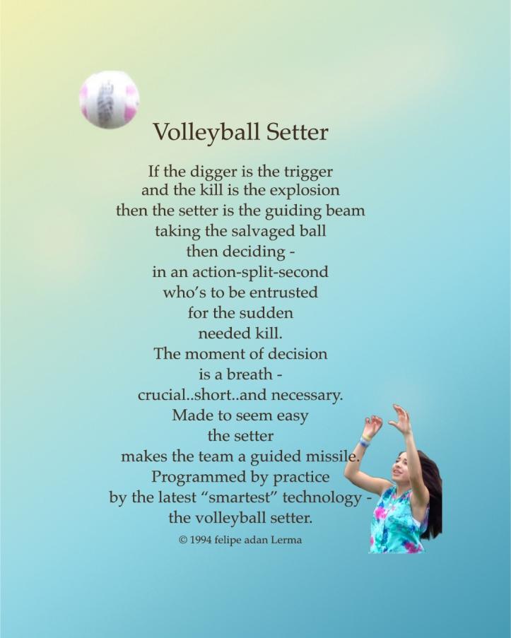 Volleyball Setter Poster 8x10 ©Felipe Adan Lerma