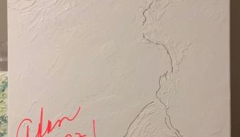 New mixed media 25x40 inch stretched canvas Barton Creek Greenbelt work in progress ©Felipe Adan Lerma