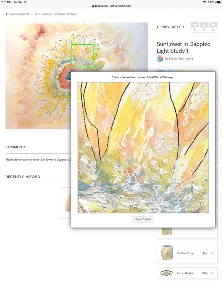 Detail, Sunflower in Dappled Light Study 1 ©Felipe Adan Lerma https://felipeadan-lerma.pixels.com/featured/sunflower-in-dappled-light-study-1-felipe-adan-lerma.html