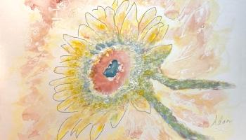 Sunflower in Dappled Light Study 1 ©Felipe Adan Lerma https://felipeadan-lerma.pixels.com/featured/sunflower-in-dappled-light-study-1-felipe-adan-lerma.html